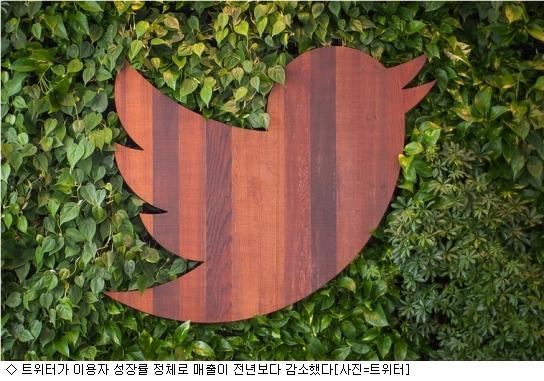 소셜강자 트위터, ''성장률'' 나홀로 고전